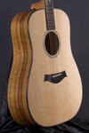 Custom Dreadnought ES (1)