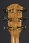 Custom Dreadnought ES (6)