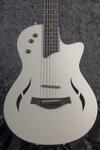 T5z Classic DLX LTD Artic White (8)