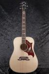 Gibson Dove (2)