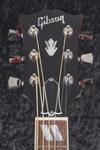 Gibson Dove (5)