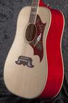 Gibson Dove (7)