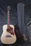 Gibson Dove (8)