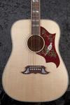Gibson Dove (9)