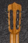 Fusion 12 Orchestra CE (6)