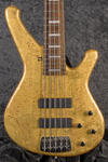 Classic Booster 5-String GP (1)