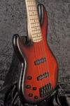 Panther TT 5-string RB BM (7)