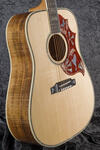 Hummingbird Custom (1)