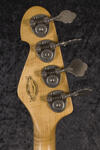 California TM4 MN Goldburst SA (6)