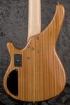 Custom 5-String Thinline (3)