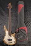 Custom 5-String Thinline (9)