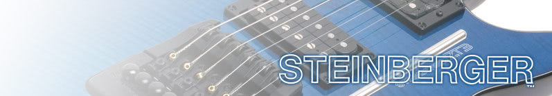 Steinberger Double Ball