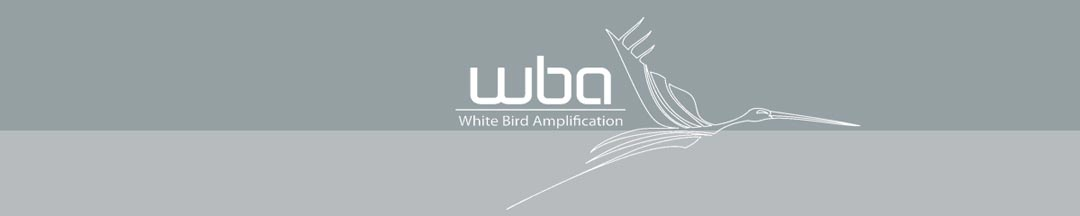 White Bird Amplification
