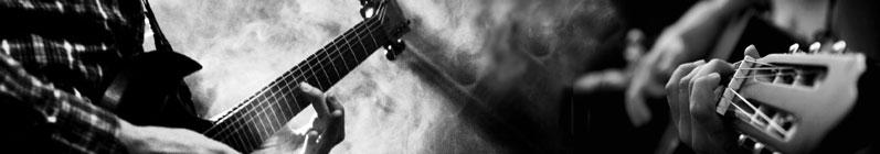 Gitarr Online Shop