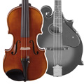 Instruments à cordes trad.