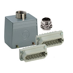 Contact 40-Pol Stecker female « Multipin-Stecker