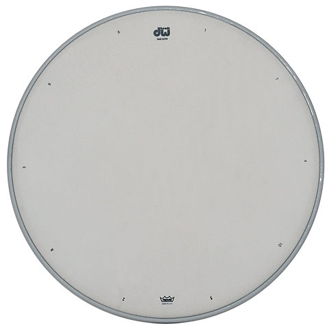 Peau de caisse claire DW White Coated Snare Drum Head 14""