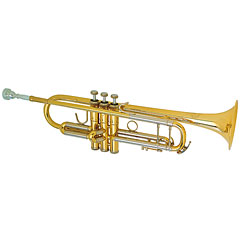 B&S 3137G-L Challenger I « Perinettrompete