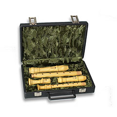 Mollenhauer Recorder case for soprano/alto 7200 « Blockflötentasche