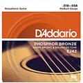 Струны для акустической гитары  D'Addario EJ42 .016-056