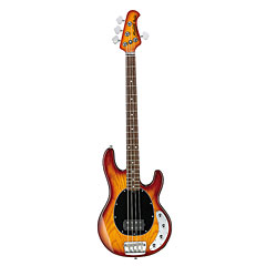 Sterling by Music Man Ray 34 « Electric Bass Guitar