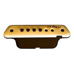 L.R. Baggs M1A « Pastillas guitarra acúst.
