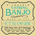 D'Addario J55 5-String Banjo « Cuerdas