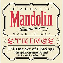 D'Addario J74 Mandolin « Saiten Zupfinstrument