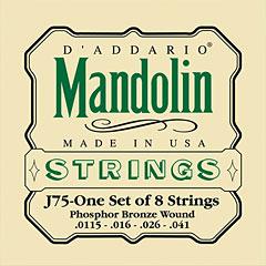 D'Addario J75 Mandolin « Saiten Zupfinstrument