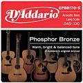 Cuerdas bajo acústico D'Addario EPBB170-5 .045-130