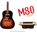 Pastillas guitarra acúst. L.R. Baggs M80