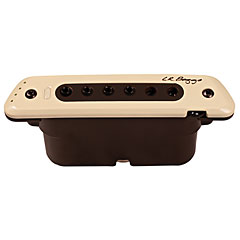 L.R. Baggs M80 « Acoustic Guitar Pickup