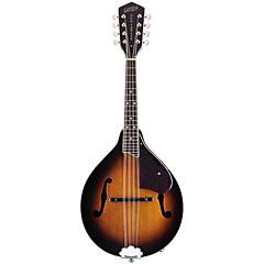 Gretsch Guitars G9320 New Yorker Deluxe