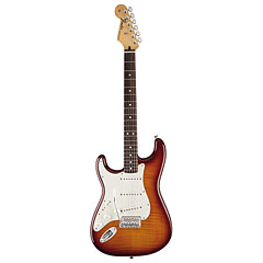 Fender Standard Stratocaster Plus Top RW TBS  «  Guitare gaucher