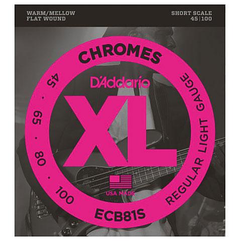 D'Addario ECB81S Chromes .045-100