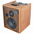 Akustikgitarren-Verstärker Acus One 6T Wood