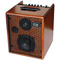 Akustikgitarren-Verstärker Acus One 5T Wood