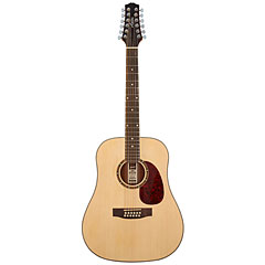 Ashton D25/12 NTM « Acoustic Guitar