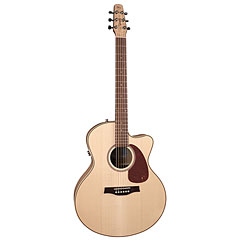 Seagull Performer CW MJ FM HG Q1 « Acoustic Guitar