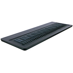 ROLI Seaboard Grand Stage « MIDI Keyboard