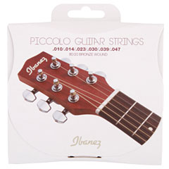 Ibanez IPCS6C « Western & Resonator Guitar Strings