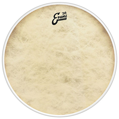 Evans Calftone 16  Bass Drum Head