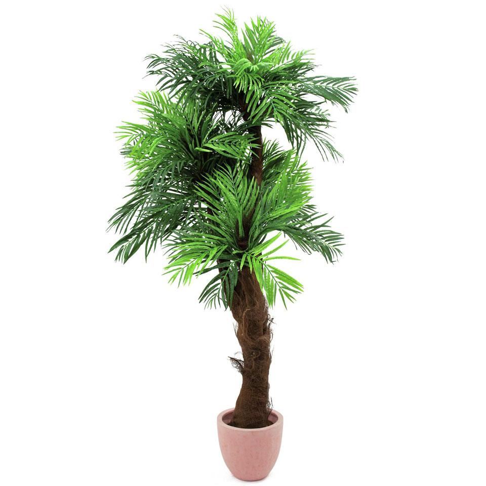 europalms areca palme mit palmfaserstamm 10088694 decoration. Black Bedroom Furniture Sets. Home Design Ideas
