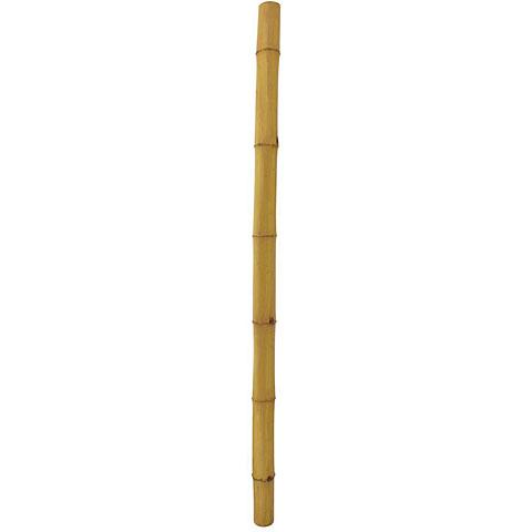 Europalms Bambusrohr