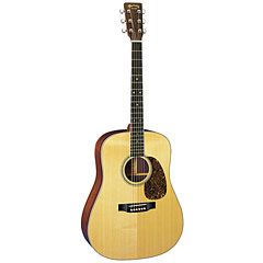 Martin Guitars D-16RGT « Acoustic Guitar