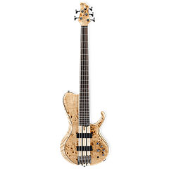 Ibanez BTB845SC-NTL Terra Firma Single Cut « Electric Bass Guitar
