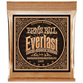 Western & Resonator Ernie Ball Everlast EB2548 .011-052