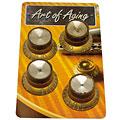 Bottone per potenziometro Crazyparts Art of Aging '60s Reflectorheads Gold, aged 4x