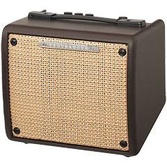 Ibanez Troubadour T15 II « Acoustic Guitar Amp