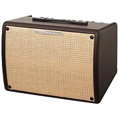Ibanez Troubadour T30II « Acoustic Guitar Amp